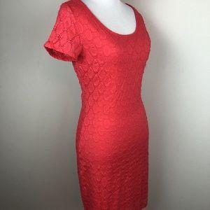 Issac Mizrahi Dress Orange Lace Small
